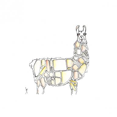 llama-by-ned-tobin
