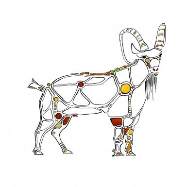 nubian-ibex-by-ned-tobin