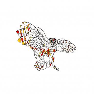 owl-by-ned-tobin